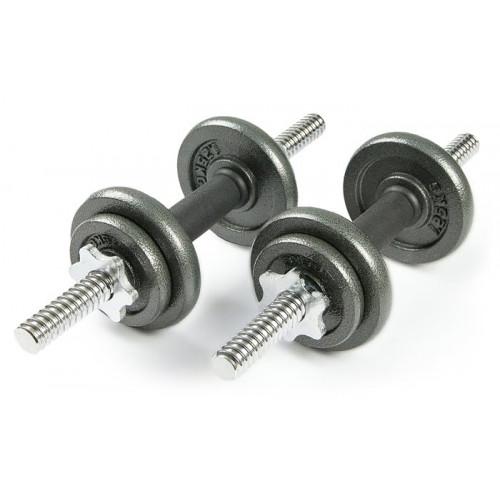 Набор металлических гантелей 2*5 кг Atlas Sport