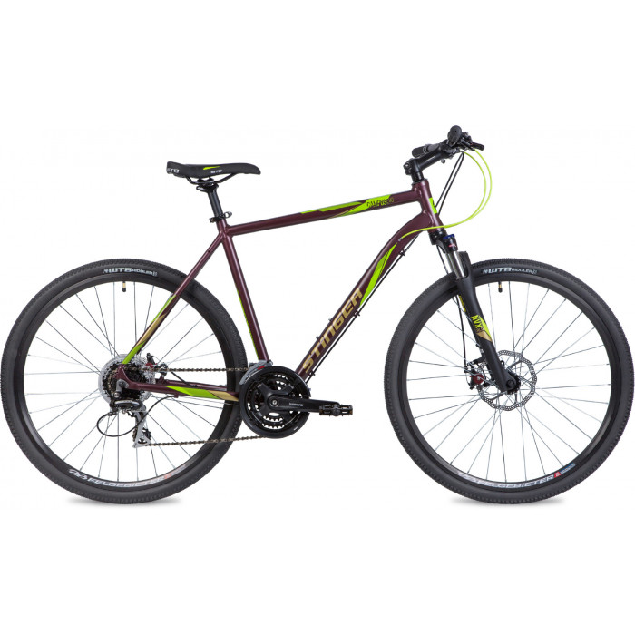 Велосипед Stinger Campus EVO (2020)